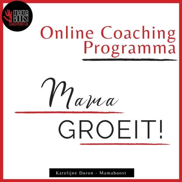 Online Coaching programma voor mama's moeders